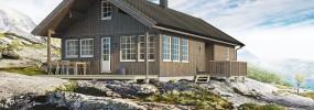 Скандинавские дома. Финские, шведские, норвежские проекты